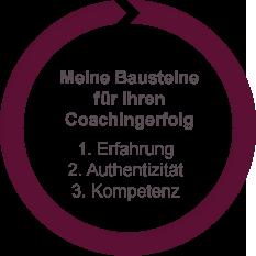 Grafik: Bausteine für Coachingerfolg